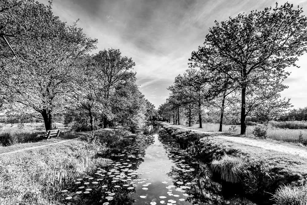 Asserwijk, Zeijerveld